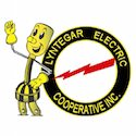 Lyntegar Electric