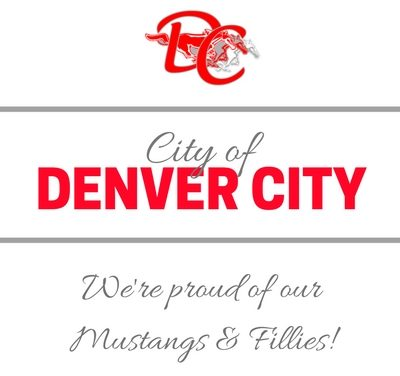 Denver City Council Met on Jan 7th