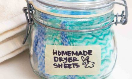 Make Your Own Eco-Friendly Dryer Sheets