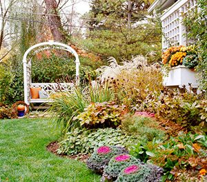 What to Plant in the Fall