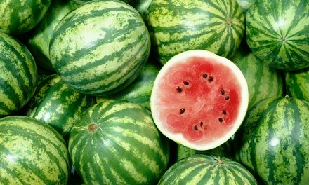 23rd Annual Yoakum County Watermelon Round-Up Happens on Sept. 1, 2018