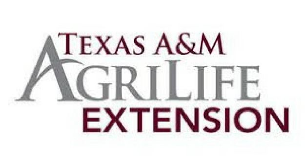 AGRILIFE TODAY: Economic risk management program offered for crop producers Jan. 23 in Lubbock