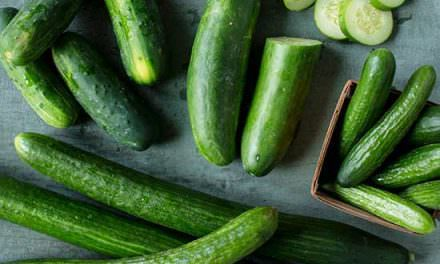 How to Grow Cucumbers in a Home Garden!