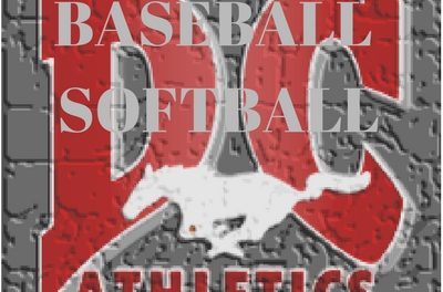 Denver City Mustangs Sweep Their Way into Area
