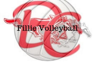 DC Fillies Volleyball Season Comes to an End