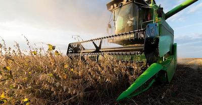Soybean Outlook – Light flickers at end of soybean tunnel