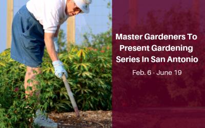 AgriLife Extension, Master Gardeners to present gardening series in San Antonio