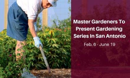 AgriLife Extension, Master Gardeners to present gardening series in San Antonio