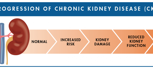 Chronic Kidney Disease: Prevention & Risk Management