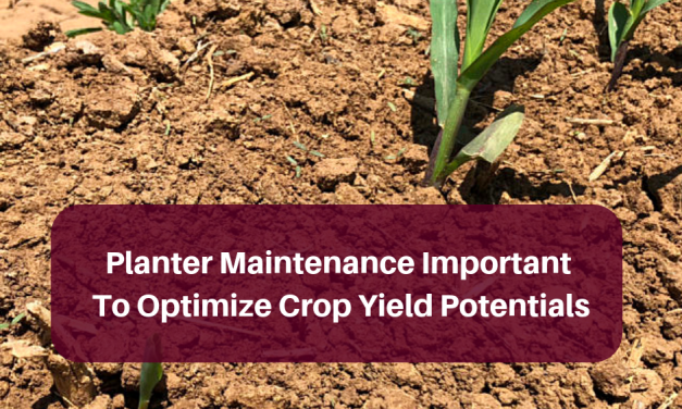 Planter maintenance important step to optimize crop yield potentials