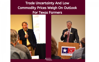 Trade uncertainty, low commodity prices weigh on outlook for Texas farmers