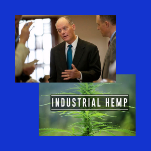 Texas House votes to legalize the farming of industrial hemp