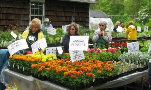 Texas A&M Gardens host Plant America Kids Gardening Fair